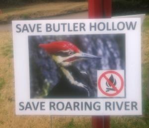 Butler Hollow 2