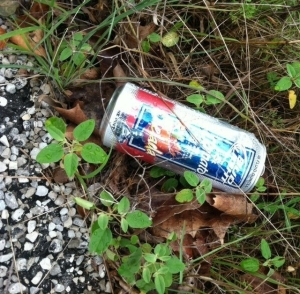 Beer Can Litter